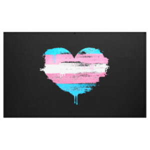 Read more about the article Cape High Court upholds rights of trans people and their spouses